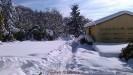 Nevicata Febbraio 2012_13