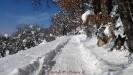 Nevicata Febbraio 2012_16