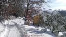 Nevicata Febbraio 2012_23