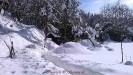 Nevicata Febbraio 2012_3